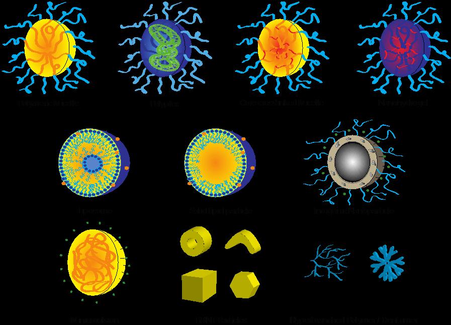 Figure 8.2   Nanoparticulate carriers.